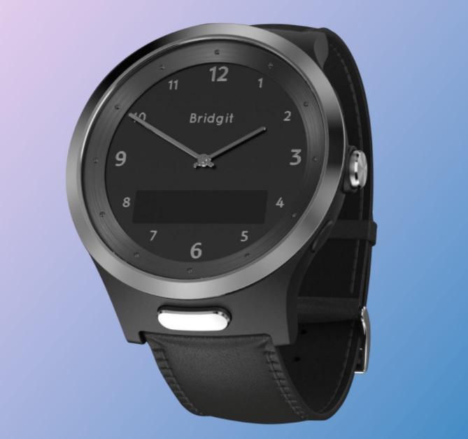 Bridgit - Watch