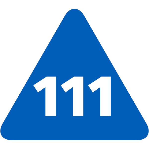 Bridgit Services - 111 NHS
